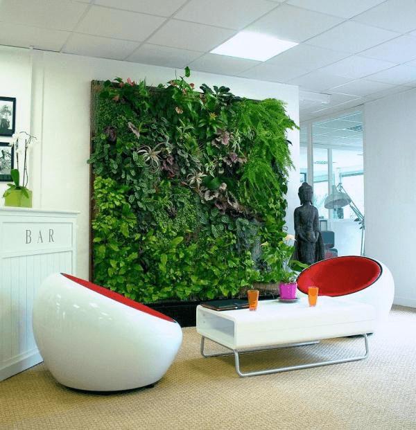 paredes con plantas