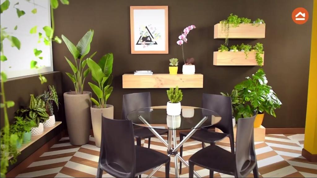 decorar con plantas de interiores
