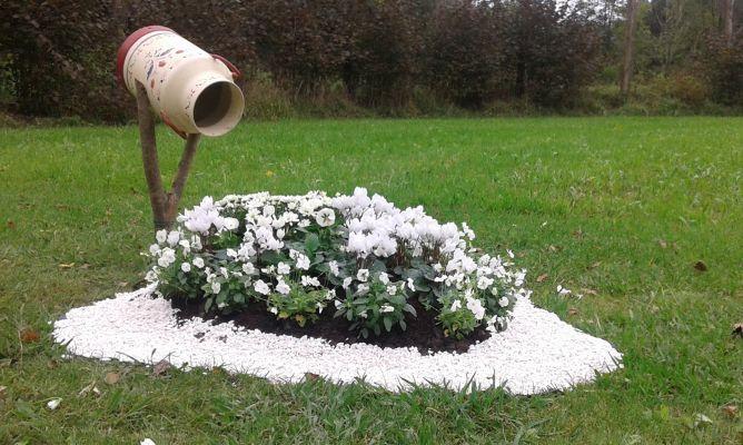 decorar con plantas con flores