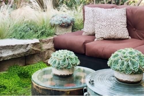 centros de mesa con planta suculenta